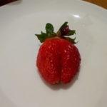 バルコニーで育てた四季なり苺ルビーアンの初収穫と美味しさは?