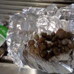 ムカゴ(むかご)の効能効果!(アルギニンも多い)と簡単シンプルレシピ