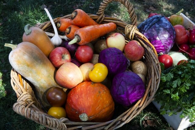 野菜無農薬